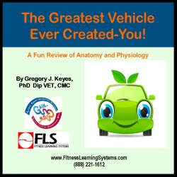 The Greatest Vehicle Ever Created-You! Image